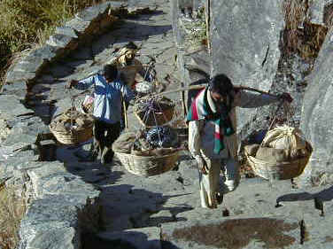 Porters carrying baskets