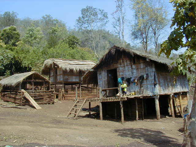 Typical bamboo house